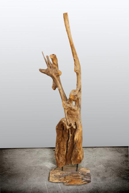 Mercier Carrelages Sculpture Racine En Teck